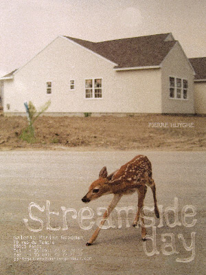 streamside-day-Pierre-Huyghe-s